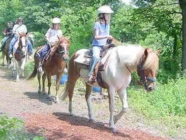 Lincoln Rhode Island Horseback Riding